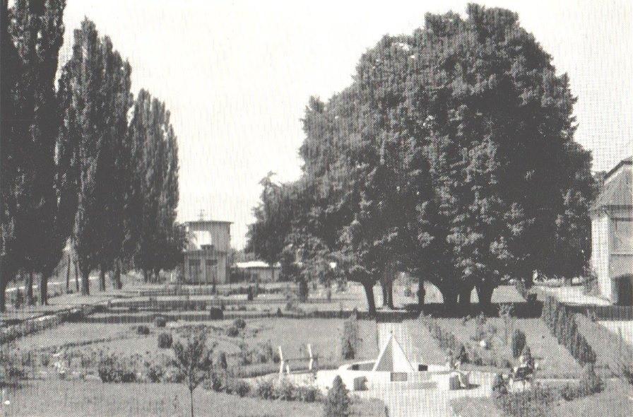 Dolný park pri Župnom dome v Púchove (1970) - Pravdepodobne bol zriadený ako súčasť stavby Župného domu ešte na konci 18. storočia, kedy mal neskoro barokový charakter so symetrickými záhonmi a výsadbou. Spustol najmä v priebehu 90. rokov minulého storočia a dnes ho po obnove poznáme ako tzv. Europark.