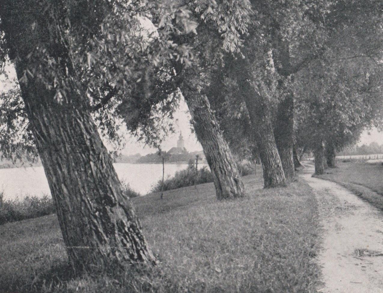 Nábrežie Váhu medzi Púchovom (vzadu) a Nimnicou na zač. 40. rokov 20. storočia