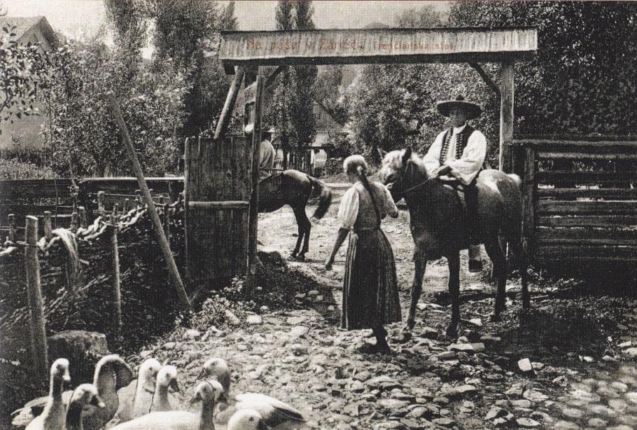 Fotografia P. Socháňa: Na pašu v Záriečí (Zdroj: Záriečie v obrazoch a spomienkach)