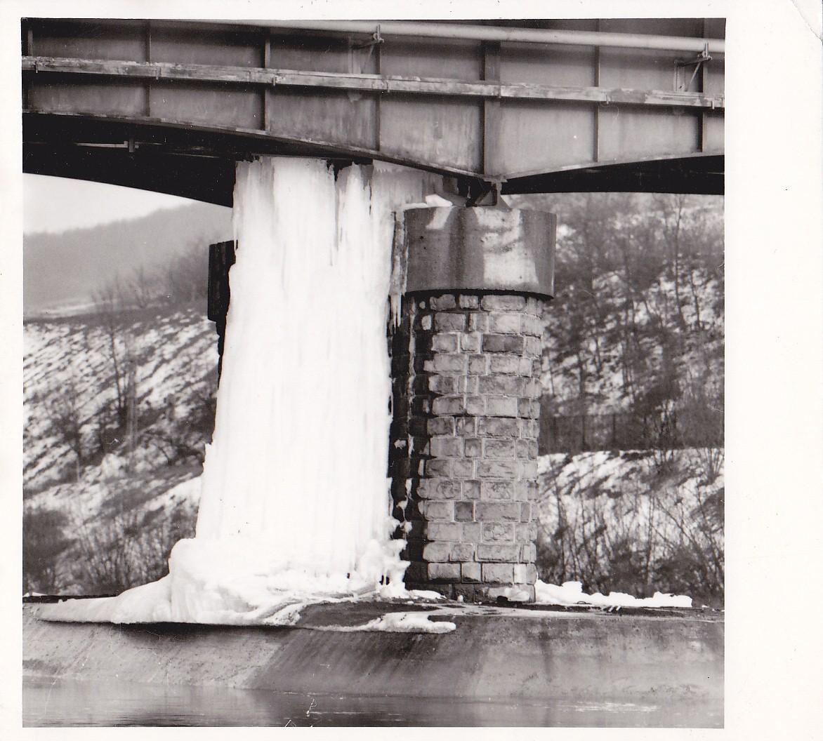 januar-1981