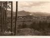 Fotografovi sa takto v roku 1927 podarilo zachytiť z úbočia Bielych Karpát Lednické Rovne. Okrem starých sklárskych budov s komínmi a železnič. stanicou (vpravo), vidieť čerstvo vybudovaný kostol sv. Michala, Vážsku dolinu, Strážovské vrchy i prašnú prácu v Cementárňach Ladce