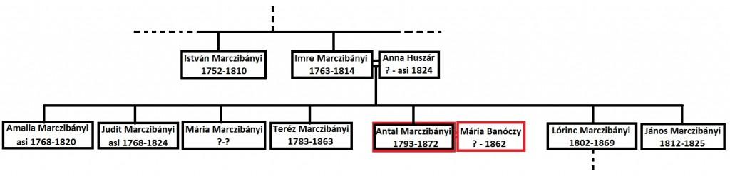 Marczib rod