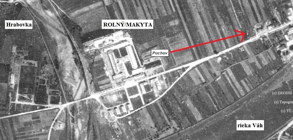 rolny 1950